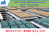 Đơn vị phân phối gạch con sâu giá rẻ - Hà Gia Phú